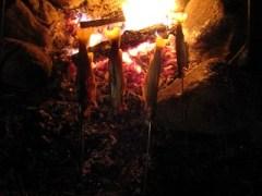 焚き火で岩魚を焼く