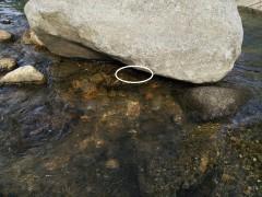 岩陰に潜む岩魚