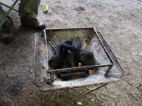 焚き火台を使っている状態