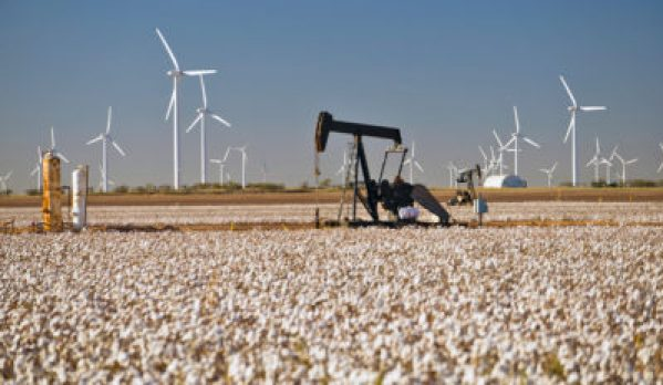Oil pump and windmills in a Texas field photo