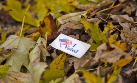 America's Addiction to Voting