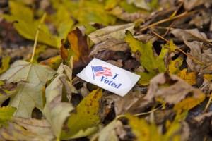 I Voted Sticker - voting in America
