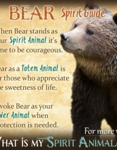bear spirit animal totem power symbolism meaning also native american symbols meanings rh buildingbeautifulsouls