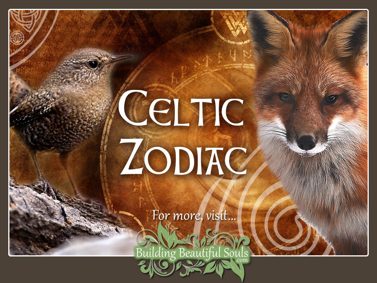 hight resolution of celtic zodiac animal meanings celtic astrology 1280x960