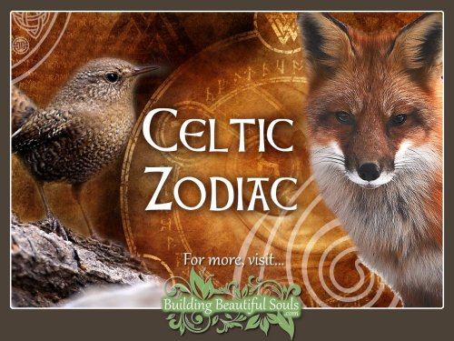small resolution of celtic zodiac animal meanings celtic astrology 1280x960