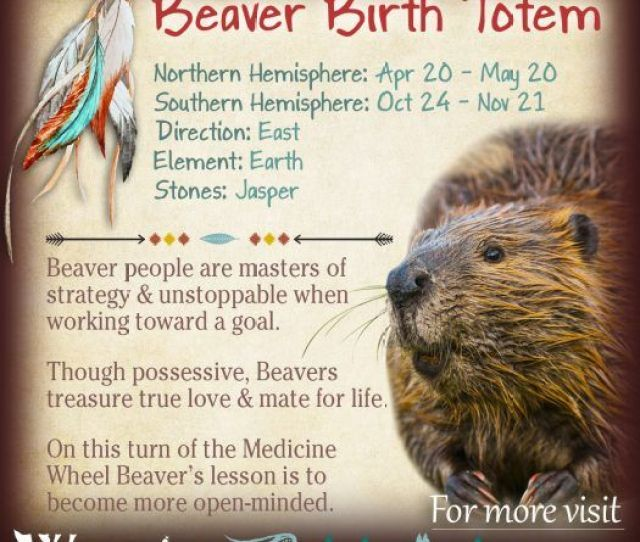 Native American Zodiac Beaver Birth Totem X