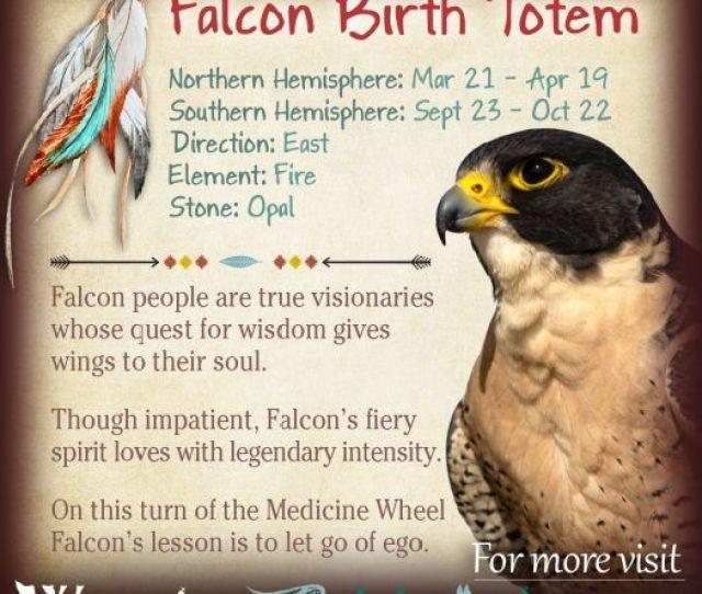 Native American Zodiac Falcon Birth Totem X