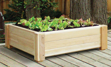 Square Foot Gardening Square Foot Gardening Indoor Square Foot