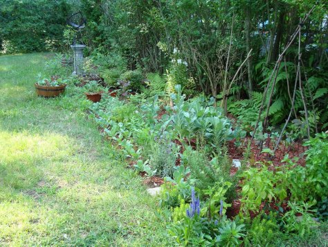A vegetable garden can be made just as attractive as any decorative flower garden