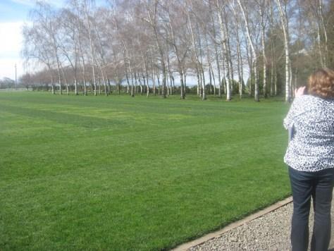 Gail from My Repurposed Life Shoots NexGen Plot-Work Lawn