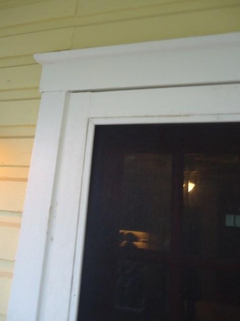 Screen Molding in Wood Screen Door