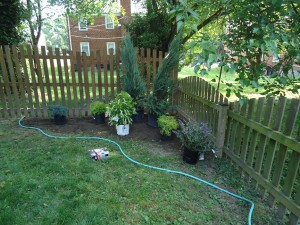 Laying Out Garden Define Bed with Garden Hose