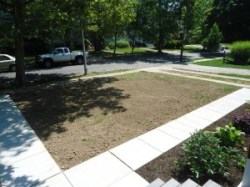 Finished Grade Before Seeding New Lawn