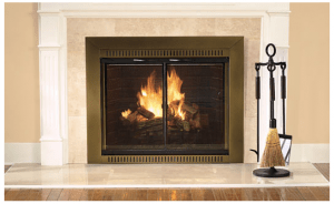 Fireplace Fire Burning with Glass Doors