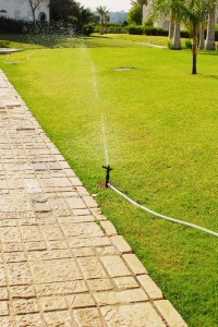 Sprinkler with a hose near a path
