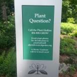 Plant Question