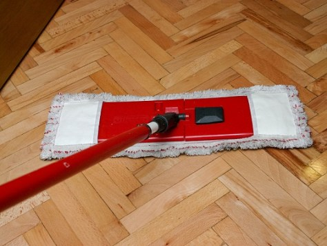 Cleaning with a Lint Mop