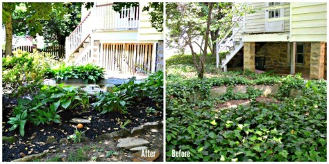 Before After Fixing a Concrete Pond