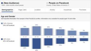 Audience Insights Facebook Targeting Strategy