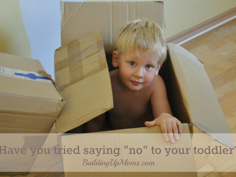 No and your toddler. Have you tried to say NO to him?