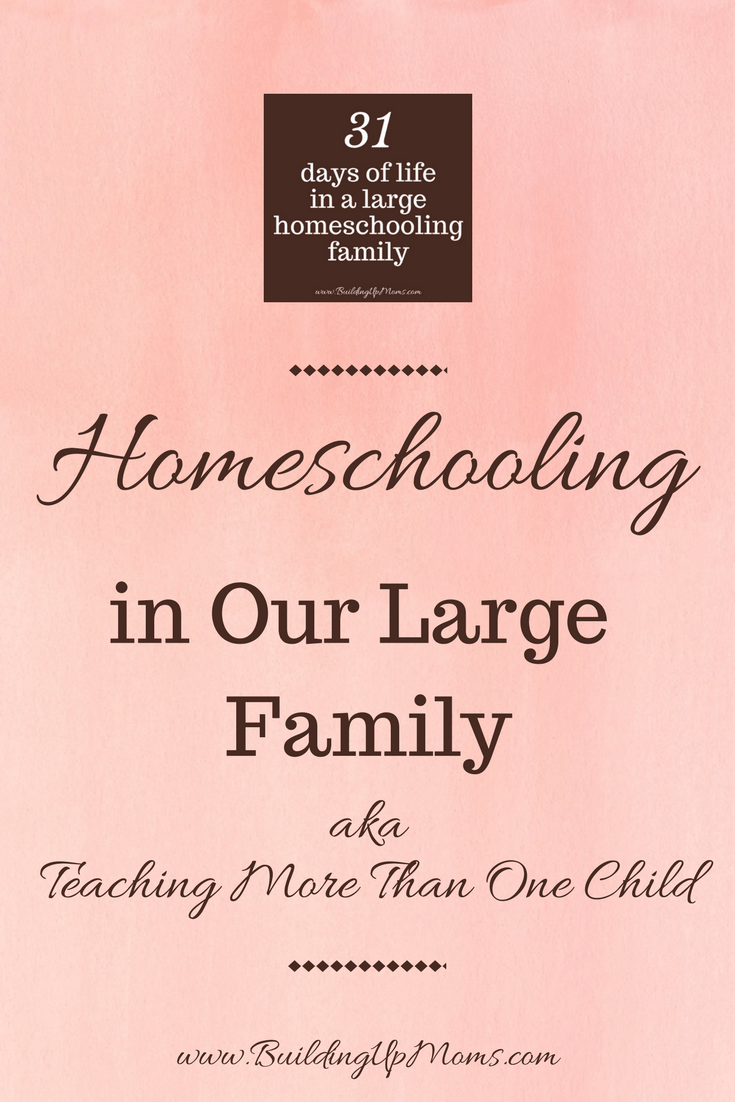 Homeschooling in a large family. How we do it.