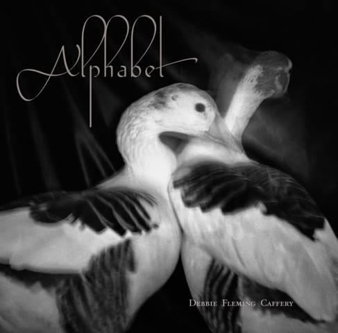 Alphabet by Debbie Fleming Caffery
