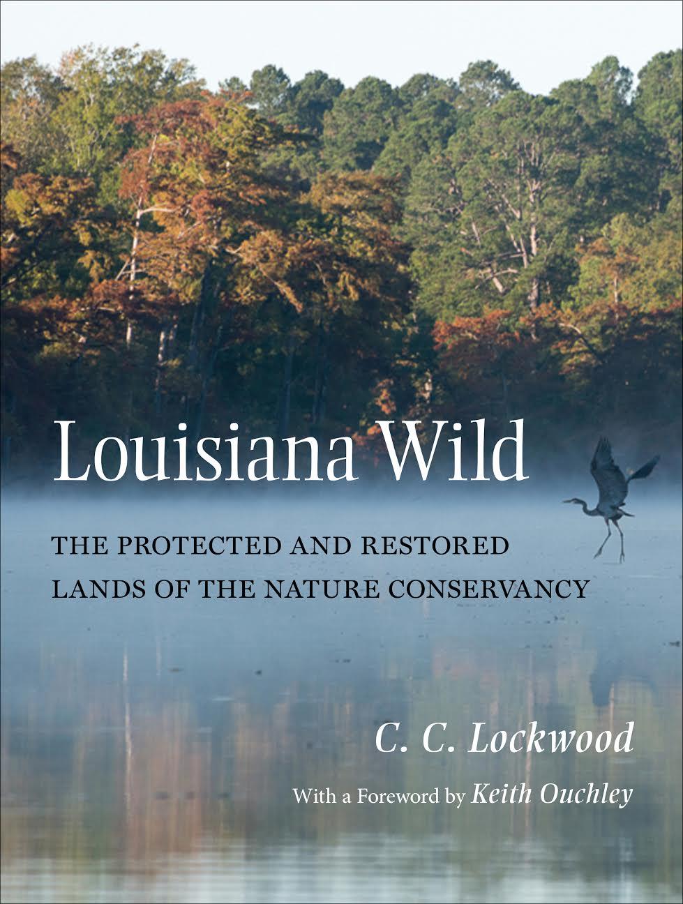 Louisiana Wild by C.C. Lockwood