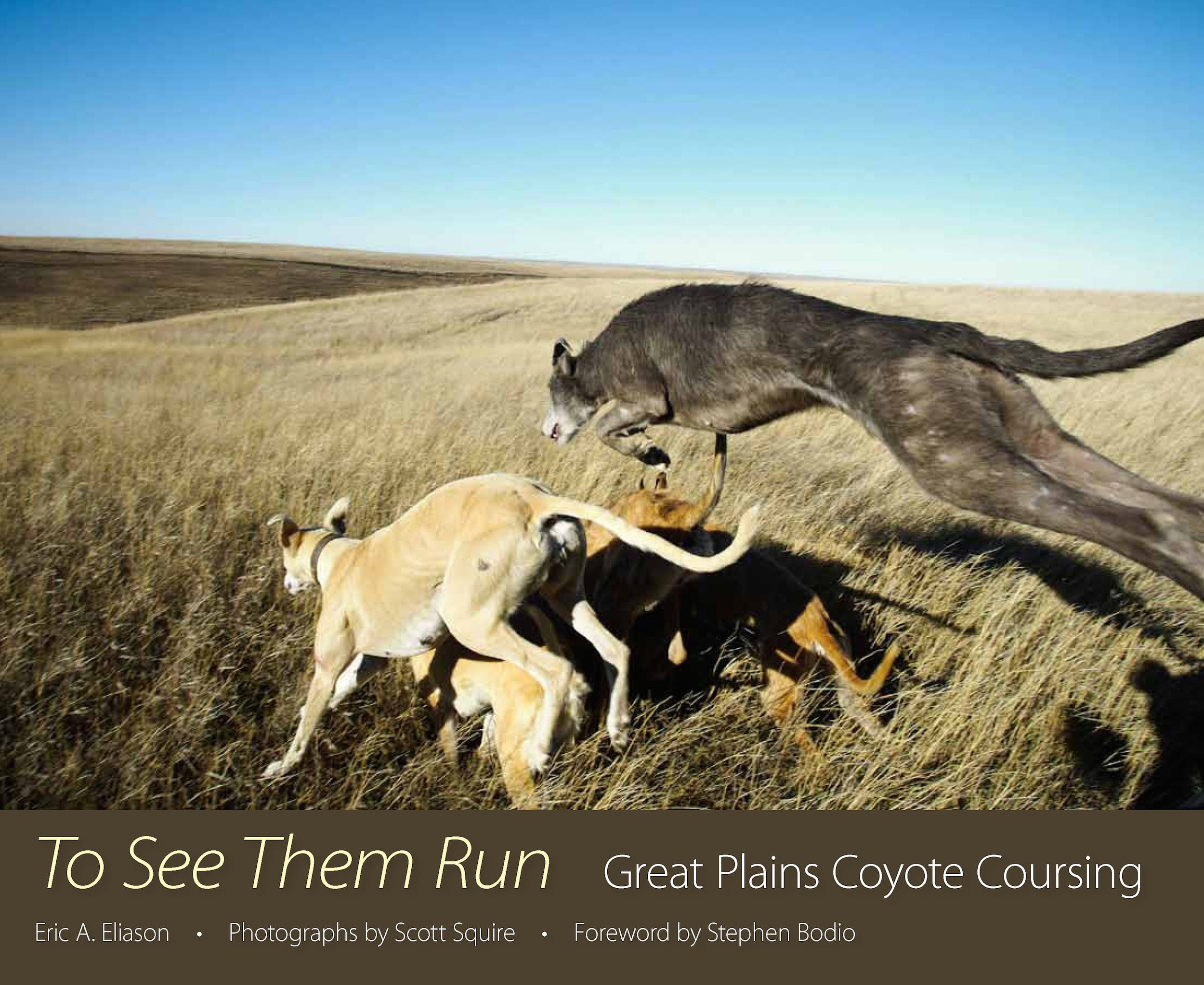 To See Them Run
