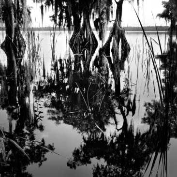 Lake Russell, Disney Wilderness Preserve, FL