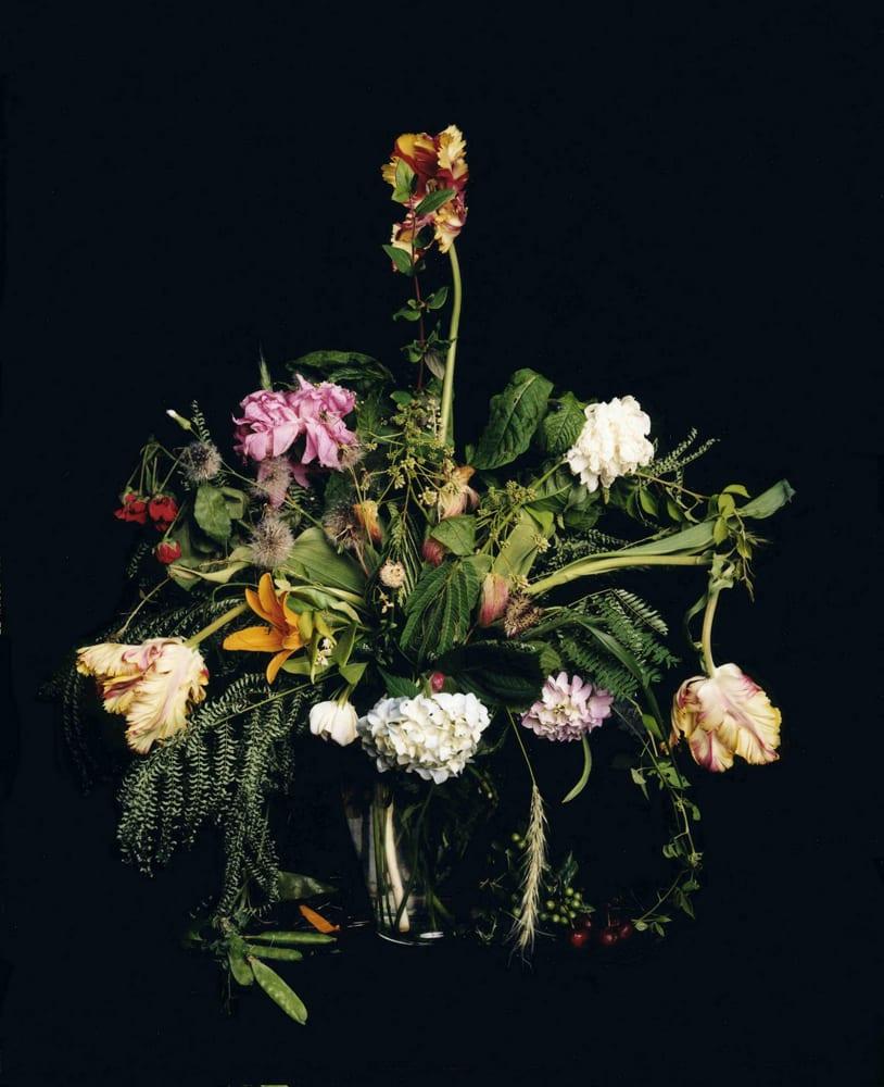 Angela West | Nature Morte
