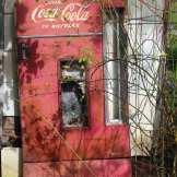 Drink Coca-Cola