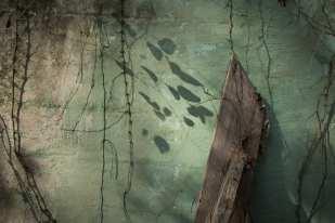 Green Wall, McKinnon, GA ©Forest McMullin