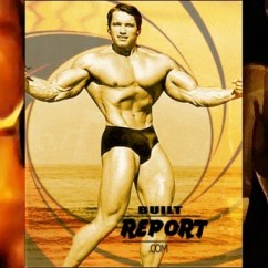 Roman Chair Situps Arnold Dining Room Table And Chairs Gumtree Schwarzenegger 1973 Workout Built Report