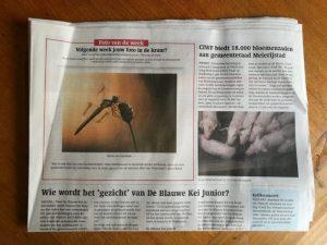 Read more about the article Foto van de week