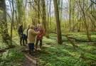 NGO Excursie: Beleef het voorjaar in het Wijboschbroek