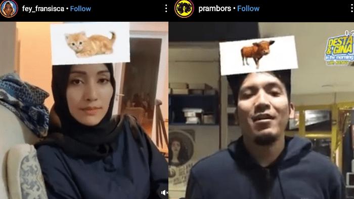 Filter Head Quiz