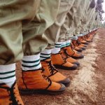 NYSC Job Portal: How to Register and Apply for Latest Recruitment Opportunities
