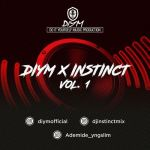Naija Mixtape: DIYM x DJ Instinct – Fire Mix (Vol. 1)