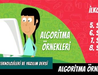 algoritma ornekleri
