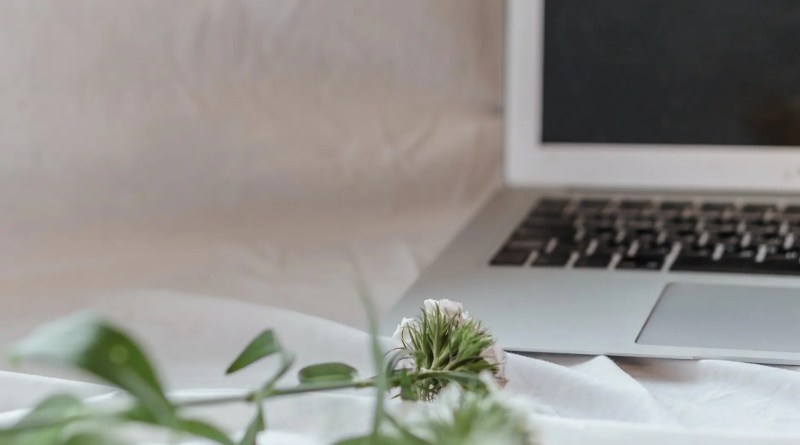open laptop near flowers on soft fabric