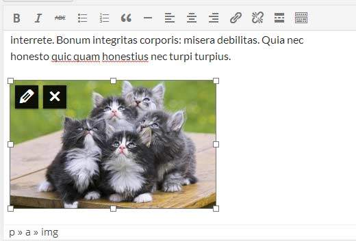 wordpress resize image
