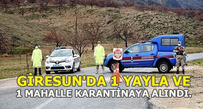 Giresun'da 1 Yayla ve 1 Mahalle Karantinaya Alındı.