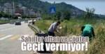 Piraziz-Bulancak sahilleri ottan ve çöpten geçit vermiyor!