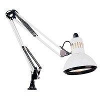Alvin Swing-Arm Lamp  Bulbs & Fittings Ideas