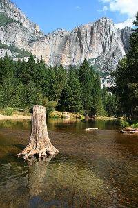 """Националният парк Йосèмити (Yosemite National Park) е разположен в щата Калифорния, САЩ, на изток от Сан Франциско. Паркът заема територия около 3 080 км2 и се простира по западните склонове на планинската верига Сиера Невада. Йосемити опазва девствени алпийски и субалпийски екосистеми, три гори с гигантска секвоя и едни от най-високите в света водопади. Годишно Йосемити се посещава от над 3 милиона души.Първите човешки обитатели на тези земи са коренните жители на Америка, които се заселват в района на Йосемити най-вероятно преди 10 000 – 7 000 години. В този район живеят най-различни племена, най-последно от които е племето майуок, което нарича долината Йосемити Ауани, което се предполага, че означава """"мястото на прозяващата се уста"""".Откриването на златото в ниските планини на Калифорния слага край на този идиличен начин на живот, когато някои от членовете на племето, разгневени от нахлуването на миньорите, атакуват едно от техните търговски поселища в каньона на река Мерсед. Като репресивен отговор миньорите организират """"батальона Марипоса"""", който е под командването на щата. Батальонът навлиза в долината Йосемити на 27 март 1851 г., за да преследва местните индианци. Вождът Теная предвожда племето си при нападенията срещу белите заселници в подножието на Сиера Невада. Батальонът залавя Теная и племето му и ги отвеждат в резерват в подножието на планината, но накрая ги оставят да се върнат в долината, носеща тяхното име."""
