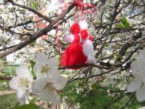 Martenitsa-blossom. /click for bigger picture/
