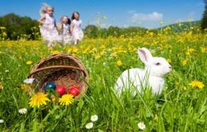 Зайченцето бяло цял ден си играло ...