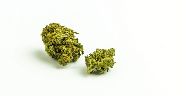 hemp flower for sale in United States