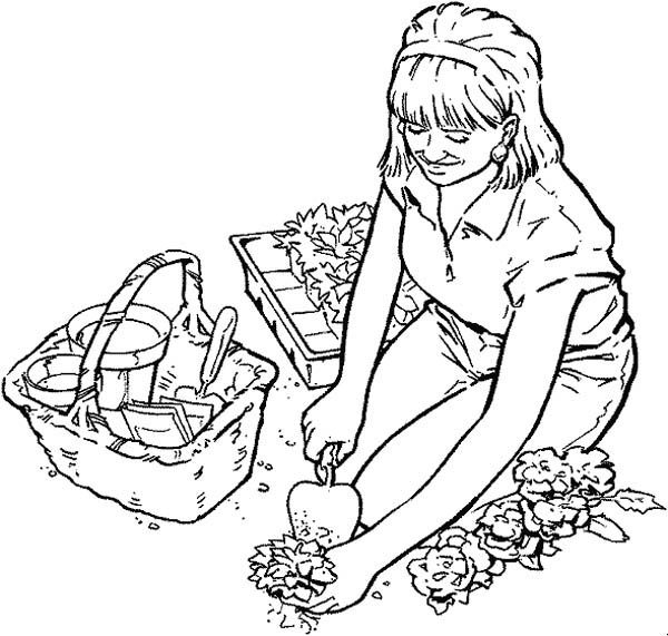 Seed Germination Coloring Page Sketch Coloring Page