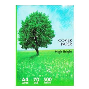 0594 A4 Paper Multipurpose Earth-Friendly Copier Paper - Bulkysellers.com